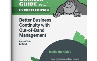Get Your Guide to Business Continuity with Out-of-Band Management