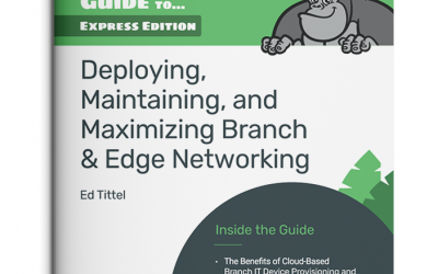 Optimize Edge Networking With This Free Guide to Out-of-Band, SD-Branch, & More