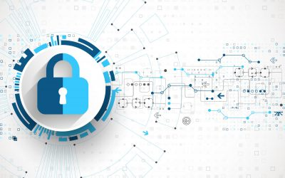 What Are the Key Zero Trust Security Principles?